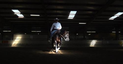 Man on a horse.